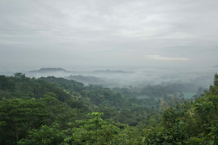 View over the Magelang jungle.