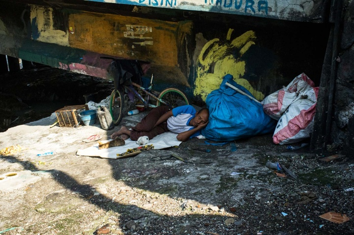 Man sleeping under bridge with his possessions and pets.