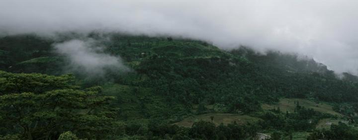 Piduruthalaga Forest Reserve landscape.