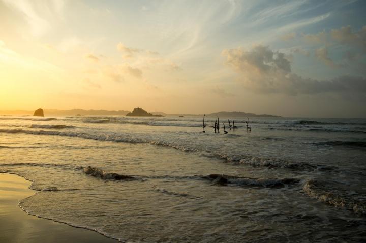 Сваи на побережье в Валгаме, Шри-Ланка.